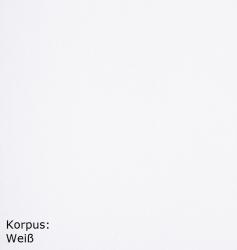 OPTIFIT Spülenschrank ohne Arbeitsplatte »Lagos«, weiß Seidenglanz, Breite 100 cm